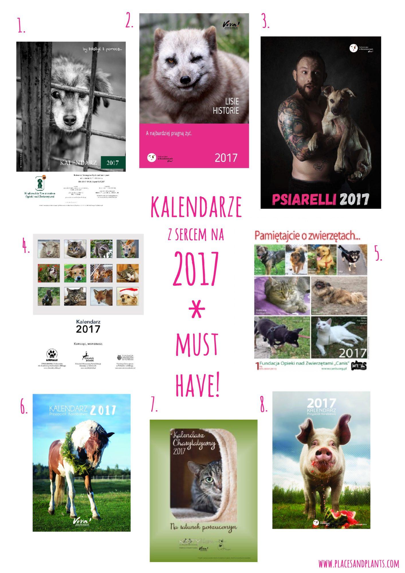 Kalendarz charytatywny na 2017