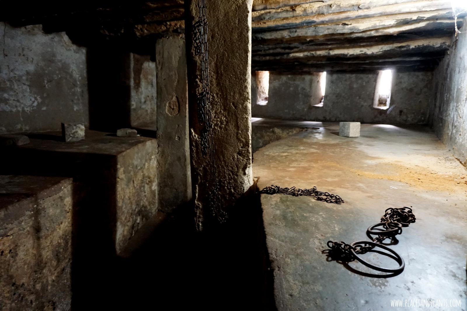 Zanzibar Stone Town Pomnik niewolnictwa