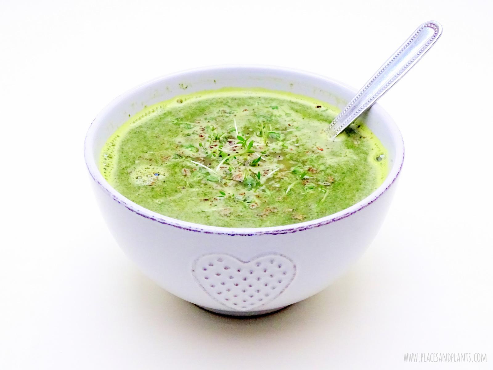 zupa z pokrzywy i rzeżuchy