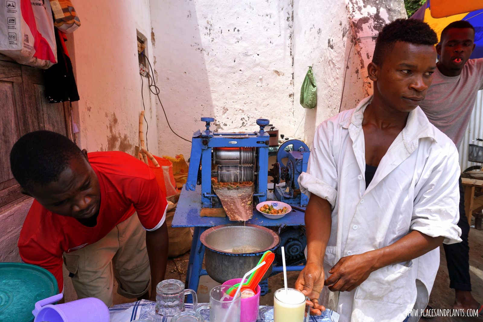wegański Zanzibar sok z trzciny cukrowej