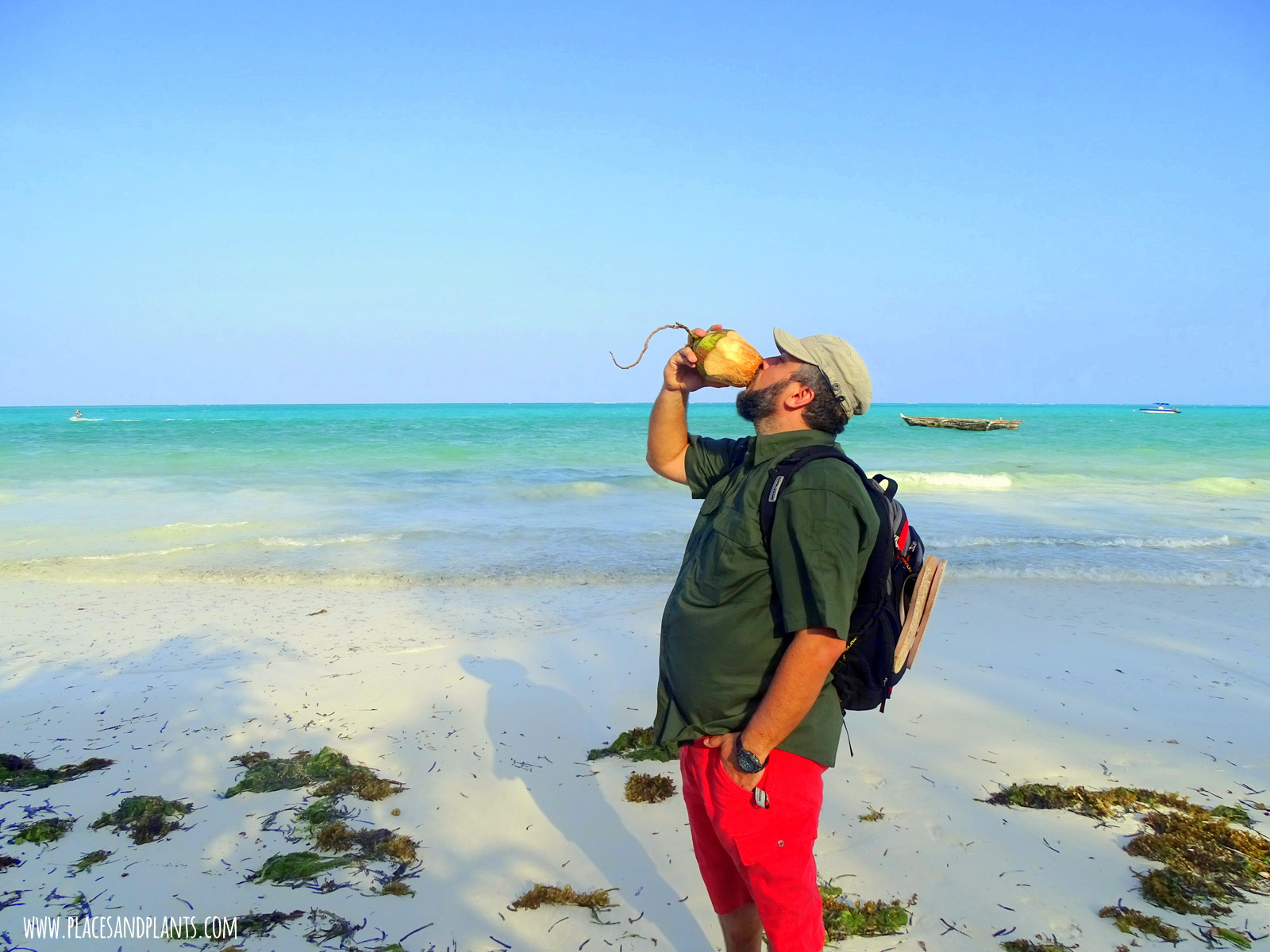 wegański Zanzibar woda kokosowa
