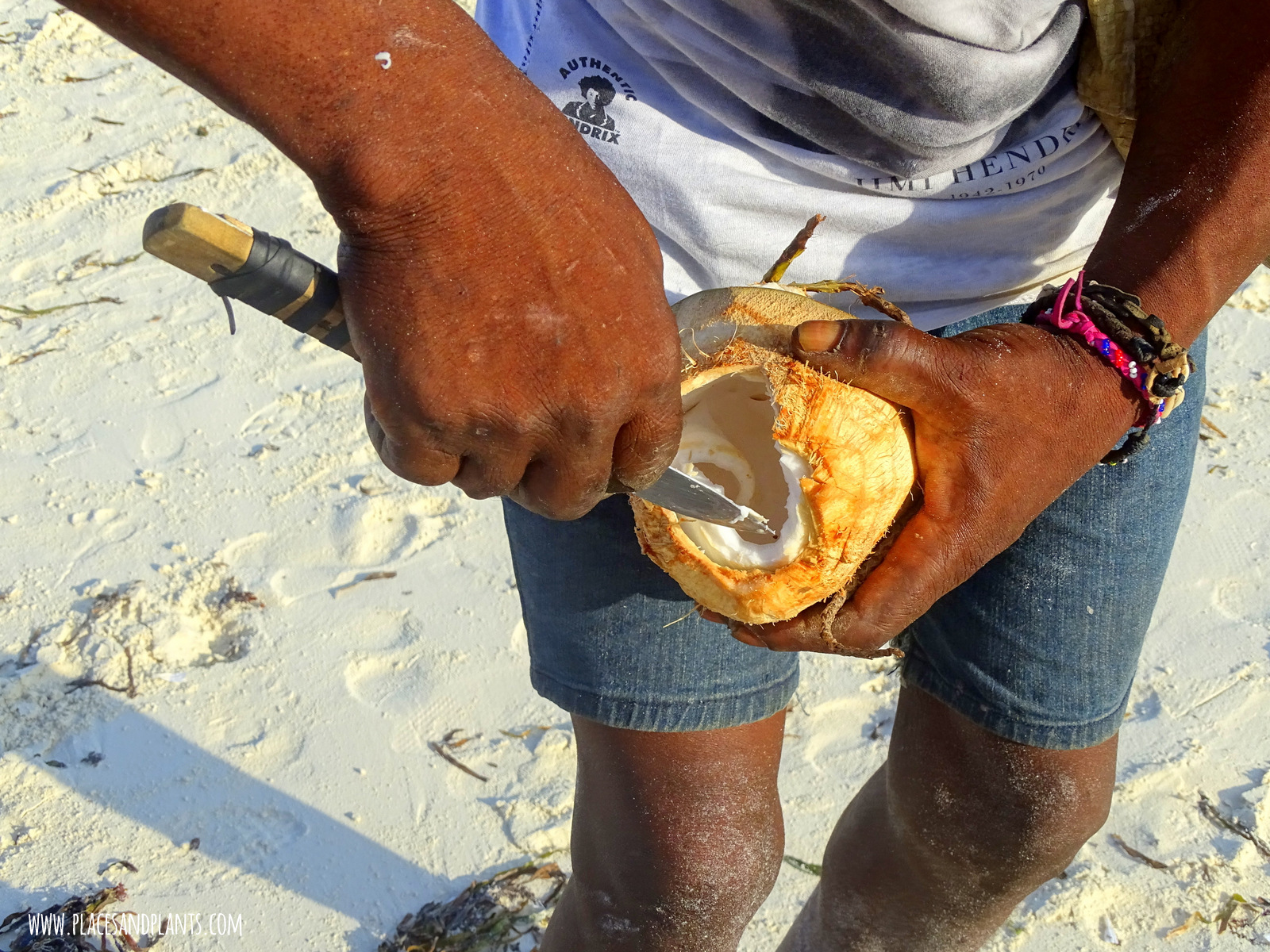 wegański Zanzibar kokos