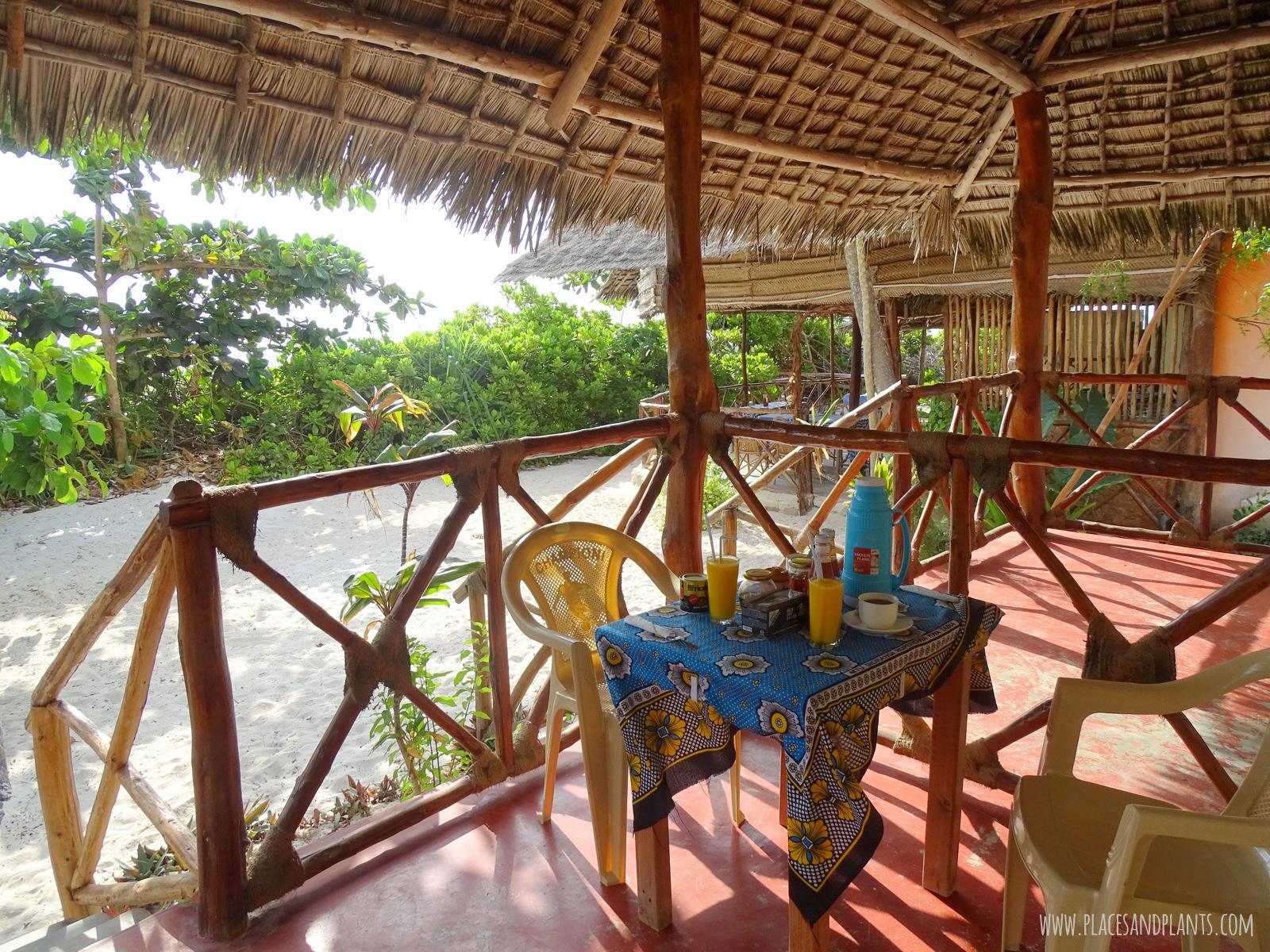 wegański Zanzibar śniadanie