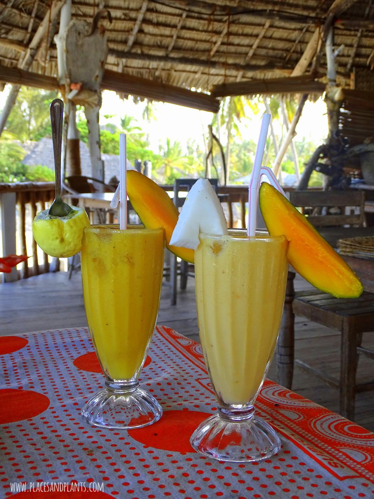 wegański Zanzibar smoothie mango