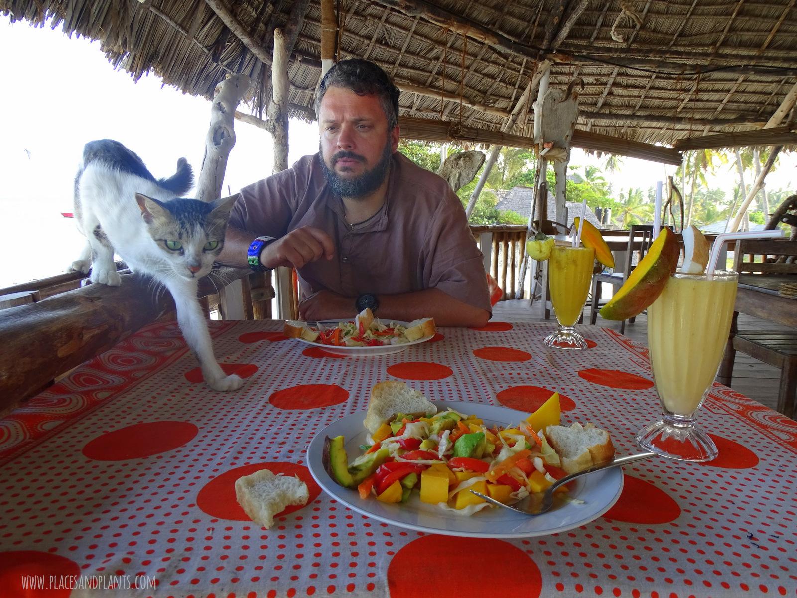 wegański Zanzibar
