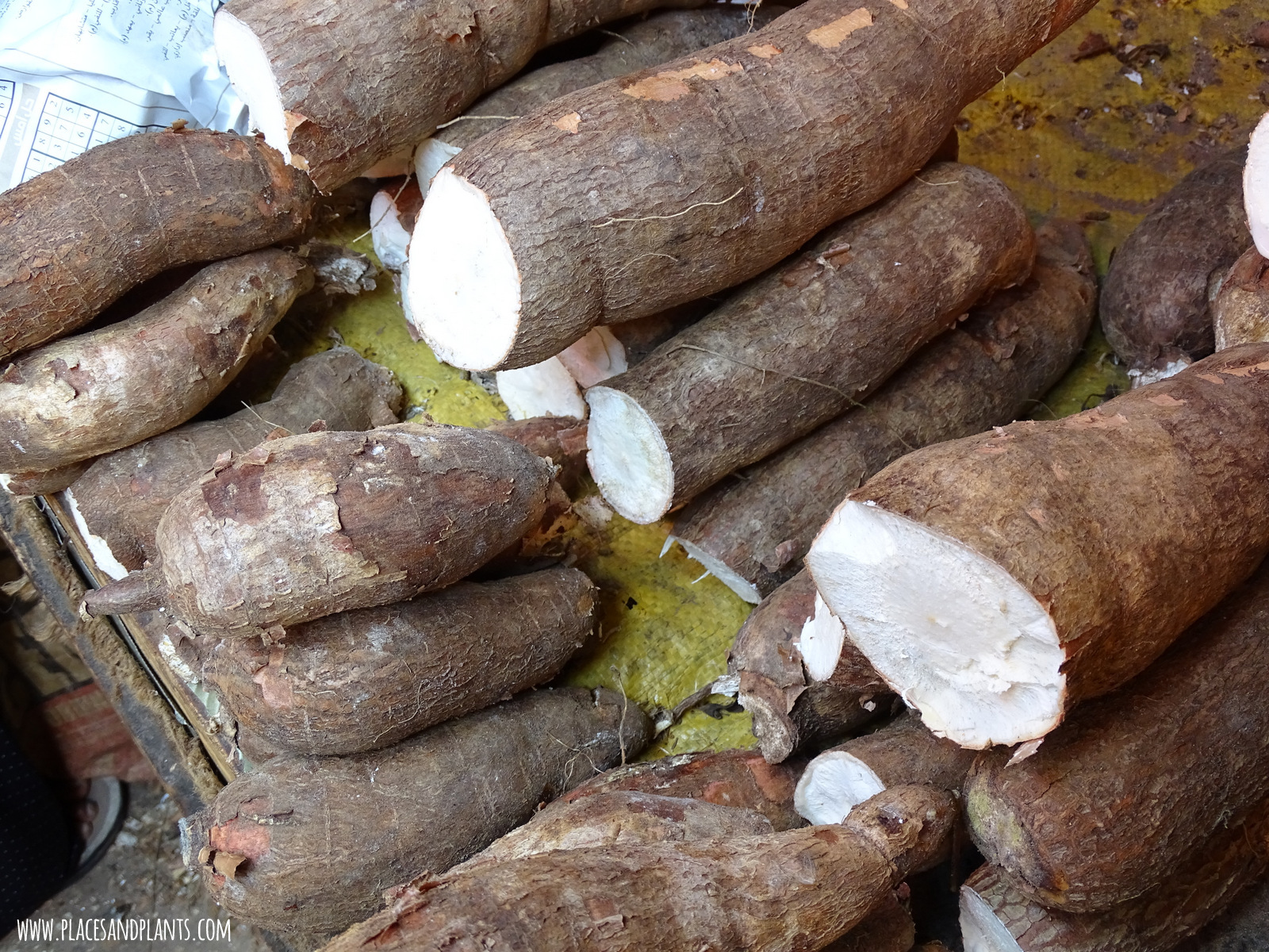 Zanzibar Darajani market maniok