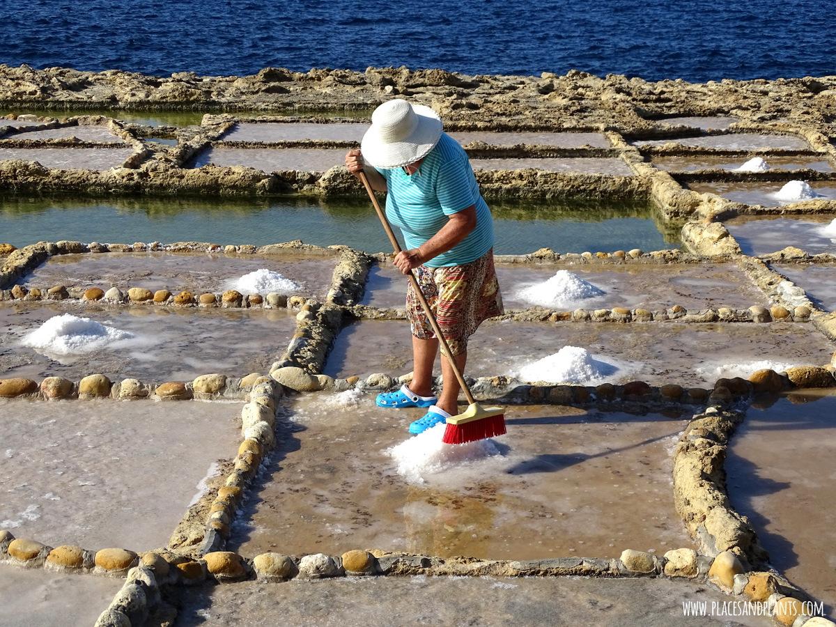 Miejsca na Gozo saliny