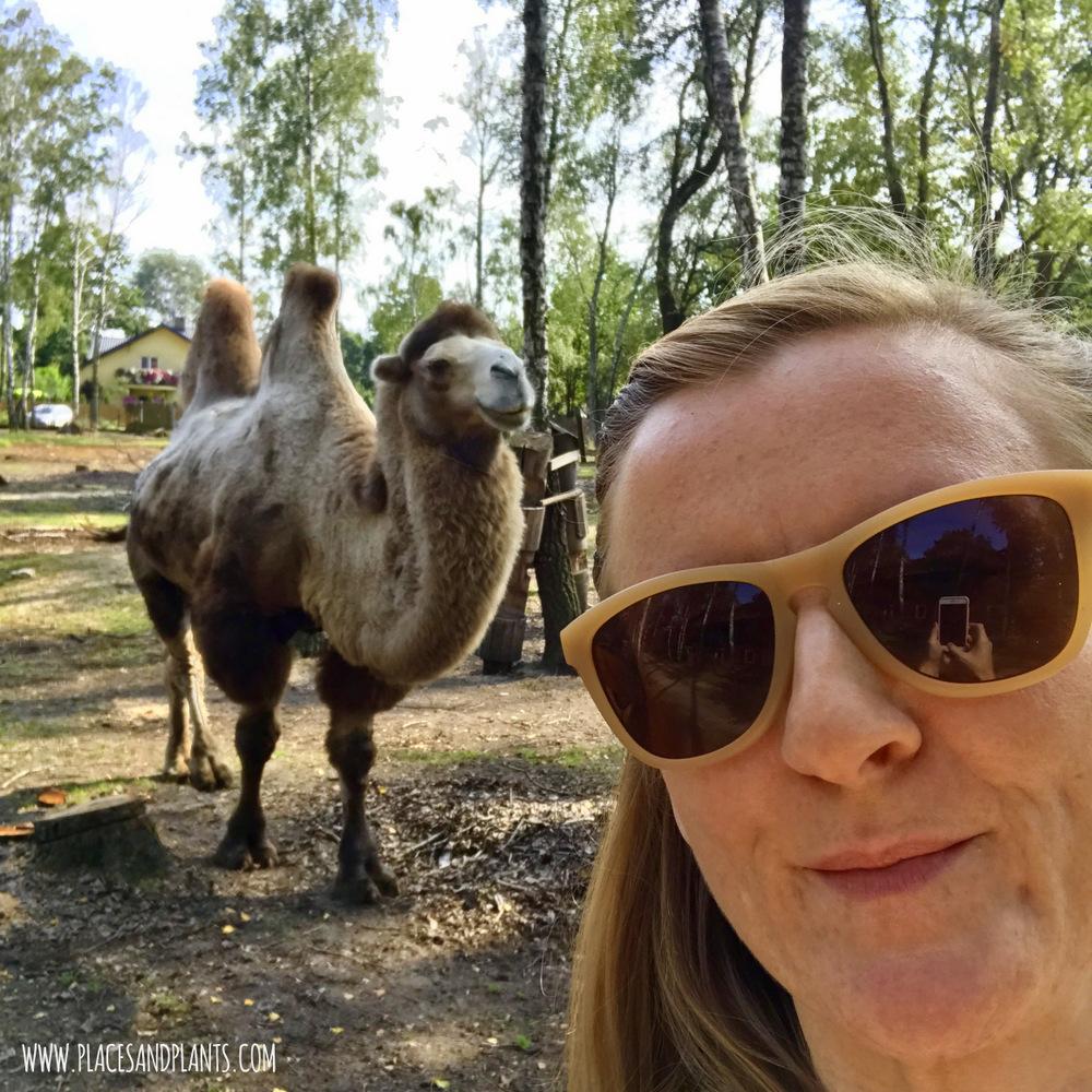 Spotkanie Kobiecych Blogerek