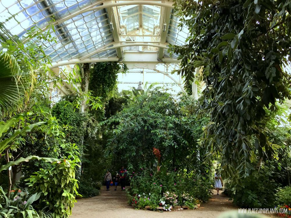 Ogrody i parki Wiedeń